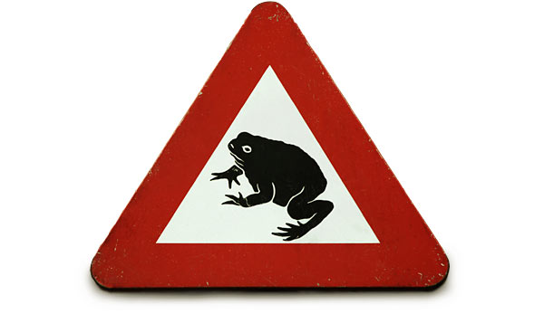Caution: Frog Boil Zone